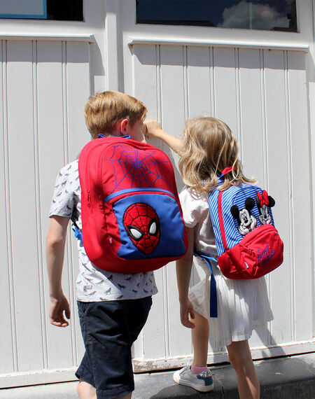 Disney Ultimate 2.0 - Minnie e Homem-Aranha | Samsonite
